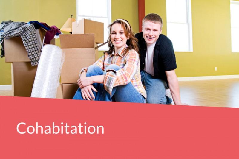 Civil partnerships and co-habitations